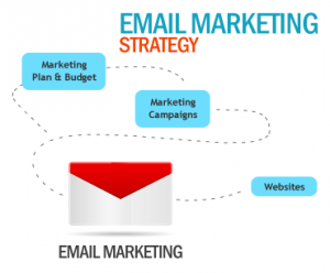kiwise email marketing plan